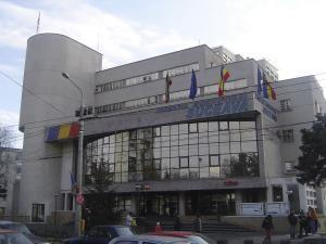 Riscurile meseriei: Invazia puricilor la Primăria Suceava