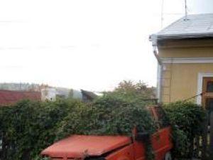 Eco maşină: Lăstunul vegetal