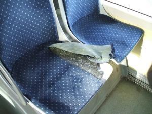 În autobuze, distrugeri intenţionate