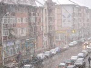 Municipiul Suceava pare că a scăpat cu bine de prima ninsoare