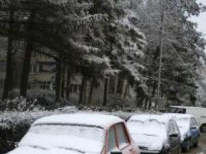 Şoferii au avut ieri dimineaţă de răzuit minute bune parbrizele îngheţate