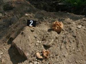 Descoperire macabră la Vadu Moldovei: mai multe fragmente de oase umane