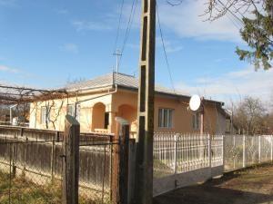 Casa profesorilor Rodica şi Ion Aparaschivei