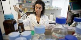 Cercetare în genetică: Celulele suşă: o descoperire echivalentă cu