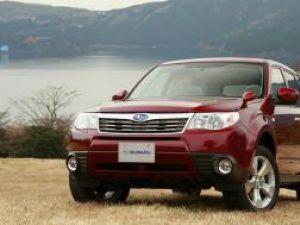 Subaru Forester, stăpânul plantaţiei