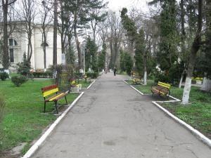 Aleea din Parcul Central care poate fi jalonată cu busturile personalităţilor proeminente ale Bucovinei
