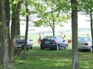 În aer liber: Sucevenii au serbat ziua de 1 Mai la iarbă verde