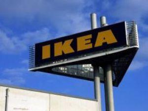 Concernul suedez IKEA intenţiona să construiască la Humor o fabrică de mobilă Foto: ALAMY
