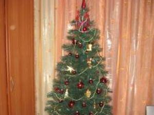Calendarul popular: Tradiţii de Crăciun