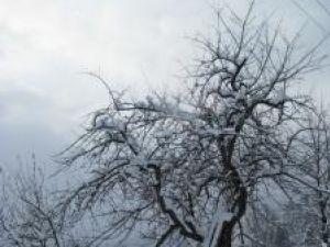 Stratul de zăpadă ajunge, în judeţ, până la 22 de centimetri