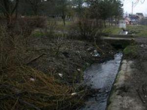 În Parcul Şipote există o reţea de şanţuri de evacuare a apelor de suprafaţă