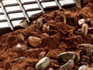 Boabele de cacao pot reduce hipertensiunea arterială. Foto: CORBIS