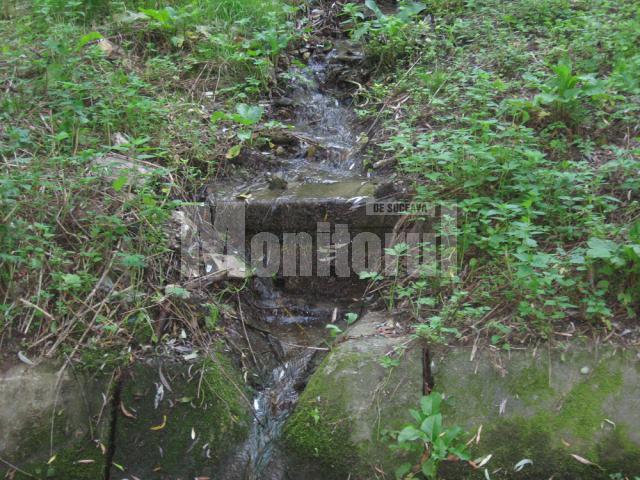 Reţeaua de drenuri din Parcul Şipote este lăsată de Primăria Suceava în voia sorţii de ani de zile