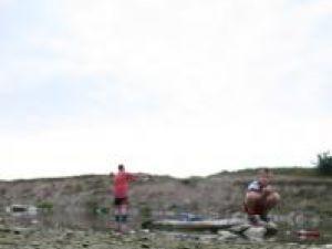 În râul Suceava, peşti morţi