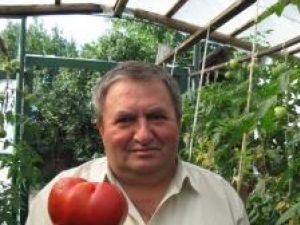 Doctorul Ioan Pop şi roşia uriaşa din gradina sa