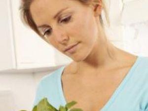 Busuiocul este folosit de secole în medicina naturistă Foto: FoodFolio