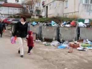 Gunoiul revarsat in strada, in zona Alimentarii din Obcini