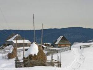 Clăile de fân şi gardurile din drum, o imagine obişnuită pentru satele de munte