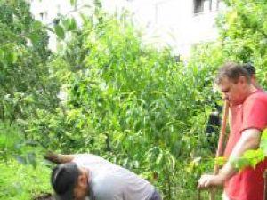 Pentru a nu provoca distrugeri grădinii familiei Nica, săpăturile au fost făcute manual, cu hârleţul şi lopata