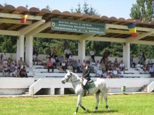 Cei mai valoroşi cai de rasă din România au făcut spectacol la Herghelia Rădăuţi
