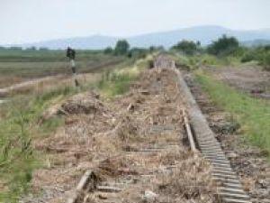 Efectele inundaţiilor: Trei linii ferate particulare din judeţ, abandonate de operator