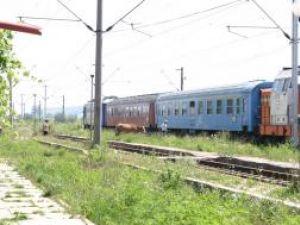 Sătenii îşi duc vacile la păscut pe lângă locomotivele şi vagoanele blocate în Gara de la Dărmăneşti