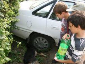 Câinii de pe stradă au fost executaţi în faţa copiilor
