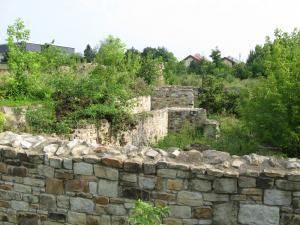 Curtea Domnească din Suceava, invadată de vegetaţie