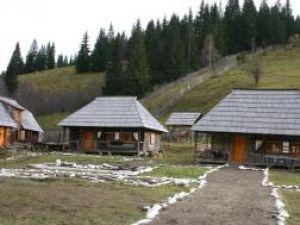 Turistii au la dispozitie sapte case taranesti vechi