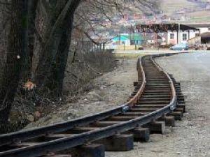 În parcul Ariniş de la Gura Humorului au început lucrările pentru amplasarea căii ferate pe care va circula mocăniţa