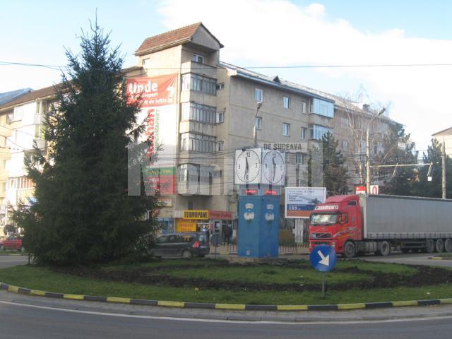 """Hoţie: Trandafirii din sensul giratoriu Burdujeni s-au făcut """"nevăzuţi"""""""