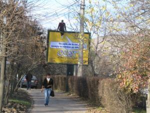 Publicitatea stradală va fi interzisă în parcuri, pe clădirile publice şi pe copaci