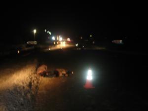 Tragicul accident s-a petrecut pe drumul european 85, în valea de la Dărmăneşti