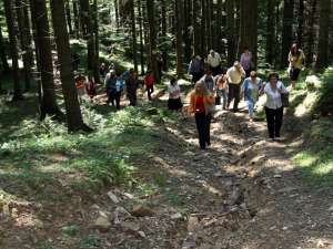Şefii de instituţii au parcurs pe jos un traseu de 4 kilometri