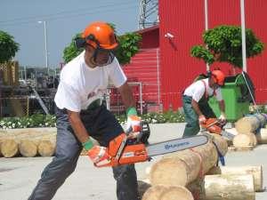 Concursul tăietorilor de lemne, în cadrul Expo Casa Ambient & Expomob Design