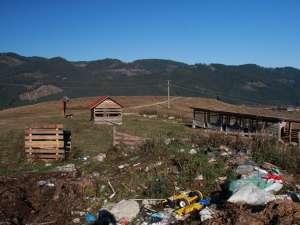 Ce a mai rămas din adăpostul pentru câini comunitari din municipiul Câmpulung Moldovenesc