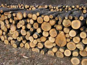 Subvenţii pentru achiziţionarea lemnului necesar încălzirii locuinţelor vor fi date pentru 34.575 de familii din judeţ