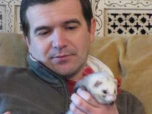 Medicul veterinar Radu Velisar şi-a ales un dihor pe post de animal de companie