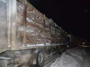Zece tiruri încărcate cu 300 de metri cubi lemne de foc, 20 de tone cartofi şi 10.000 litri de apă au plecat spre judeţele Buzău şi Vrancea