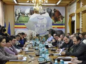 Şedinţa de constituire a Asociaţia Crescătorilor de Bovine pentru Carne din România a avut loc sâmbătă, la sediul Consiliului Judeţean