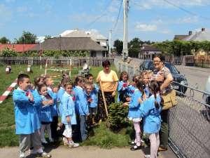 """Copiii de la Grădiniţa """"Lizuca"""" Fălticeni au participat la acţiunea Ziua Eno – Plantare de copaci"""