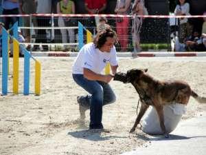 Demonstraţia de dresaj canin de la Shopping City Suceava