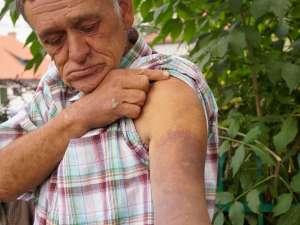 Dragoş Daniliuc şi-a scos certificat medico-legal şi a făcut plângere împotriva poliţiştilor care l-au bătut