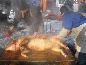 Ziua de 20 decembrie este consemnată în calendarul popular ca Ignatul porcilor