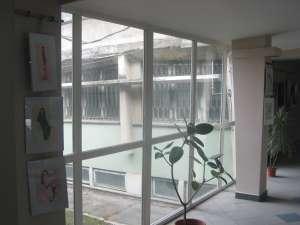 expoziţie pictură în holul IPJ