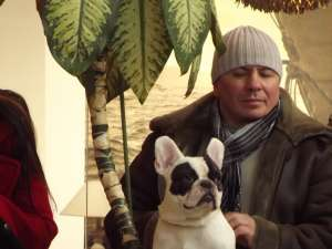 Buldogul francez, un câine boem