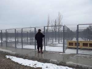 Primarul Sucevei a verificat stadiul lucrărilor de amenajare a noului ţarc pentru câini