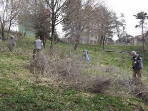 Angajaţii Selgros şi elevii a trei şcoli din Suceava au făcut curat în parcul Şipote
