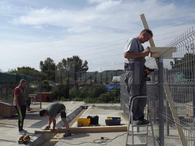 Voluntarii din Germania s-au apucat de făcut acoperişuri la noile ţarcuri din lunca Sucevei