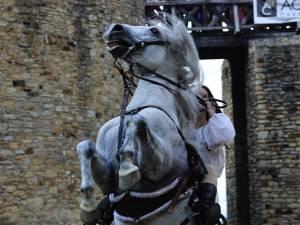 """Festivalul de Artă Medievală """"Ştefan cel Mare"""" se va desfăşura în perioada 15-18 august în Cetatea de Scaun a Sucevei"""
